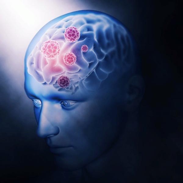 Ученые нашли источник сознания в мозге человека - Психология отношений