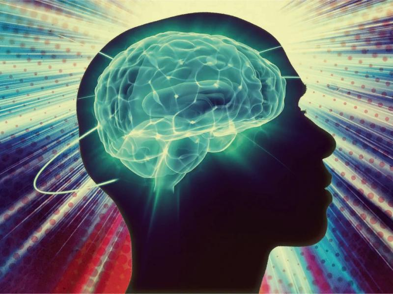 Три новых факта из жизни мозга - Психология отношений