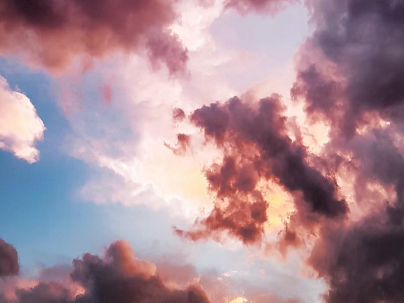 Воспоминания внучки Романа Альбертовича Лурии о своей матери - Лидии Романовне - Психология отношений